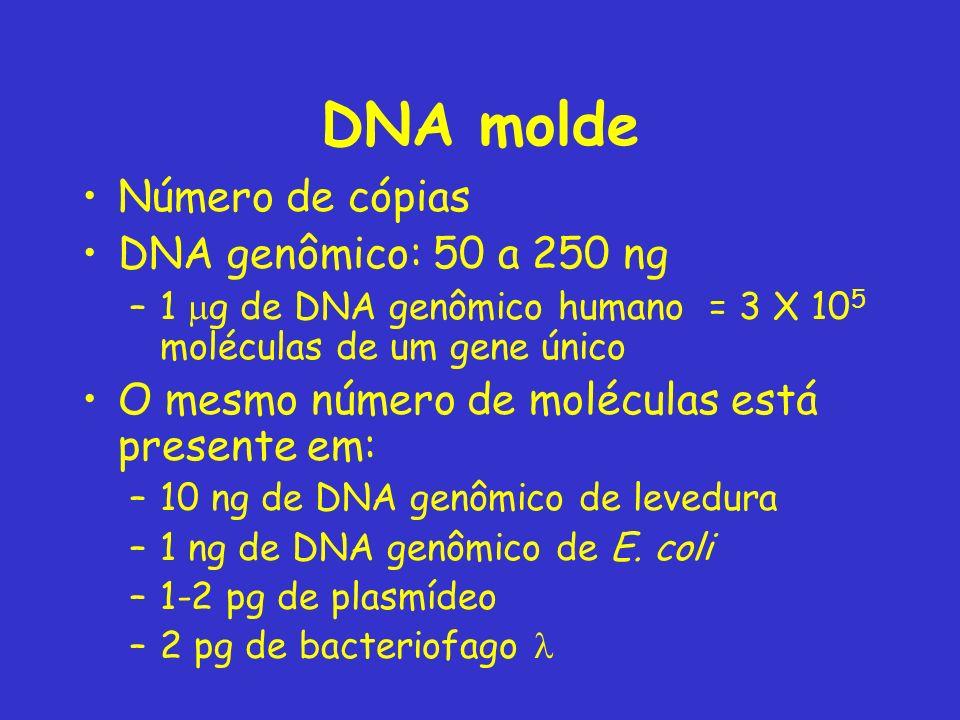 DNA molde Número de cópias DNA genômico: 50 a 250 ng