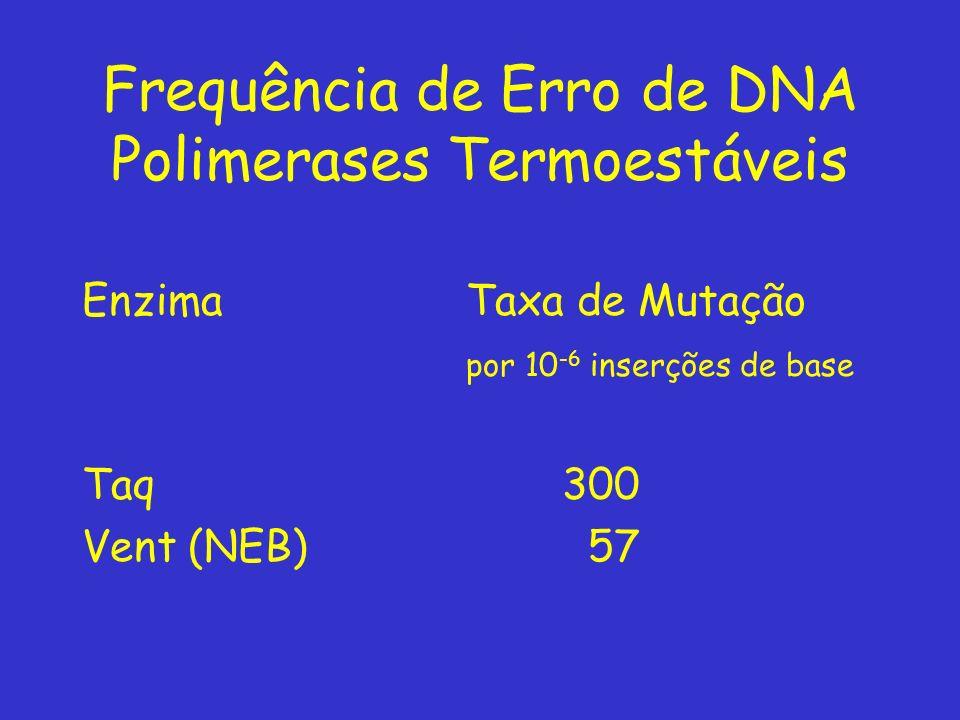 Frequência de Erro de DNA Polimerases Termoestáveis