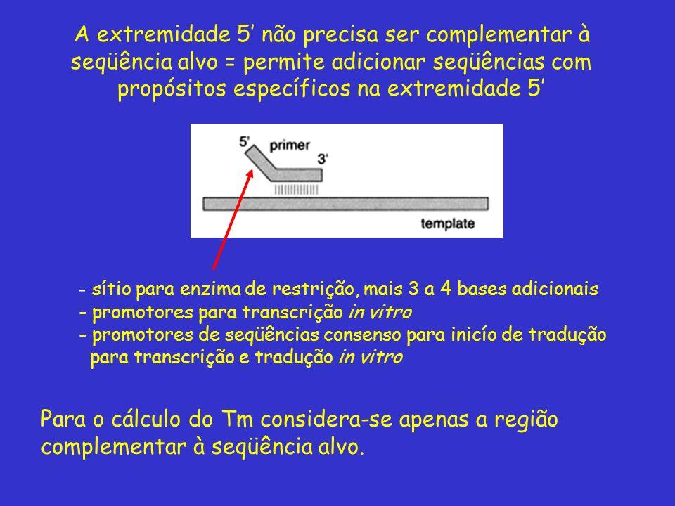 - sítio para enzima de restrição, mais 3 a 4 bases adicionais