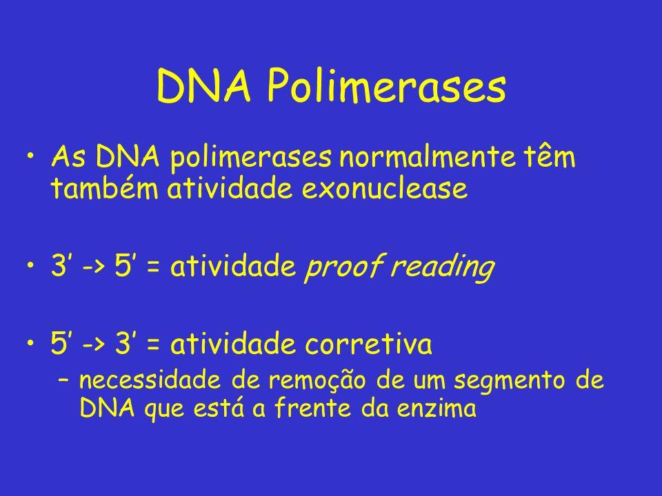 DNA Polimerases As DNA polimerases normalmente têm também atividade exonuclease. 3' -> 5' = atividade proof reading.