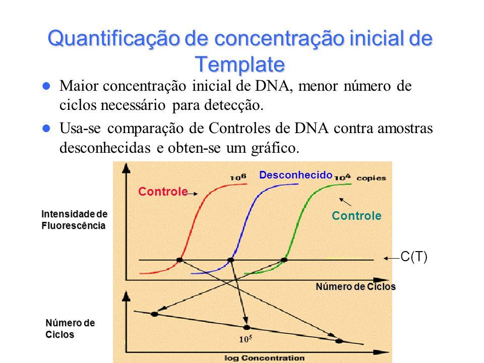 Quantificação de concentração inicial de Template