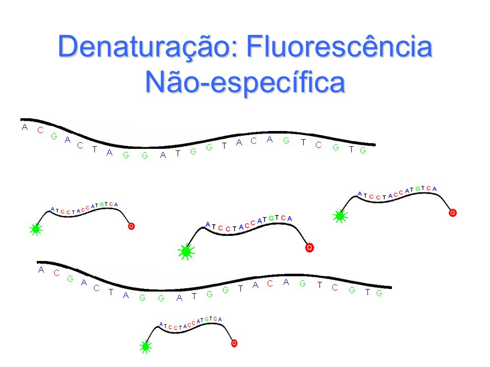 Denaturação: Fluorescência Não-específica