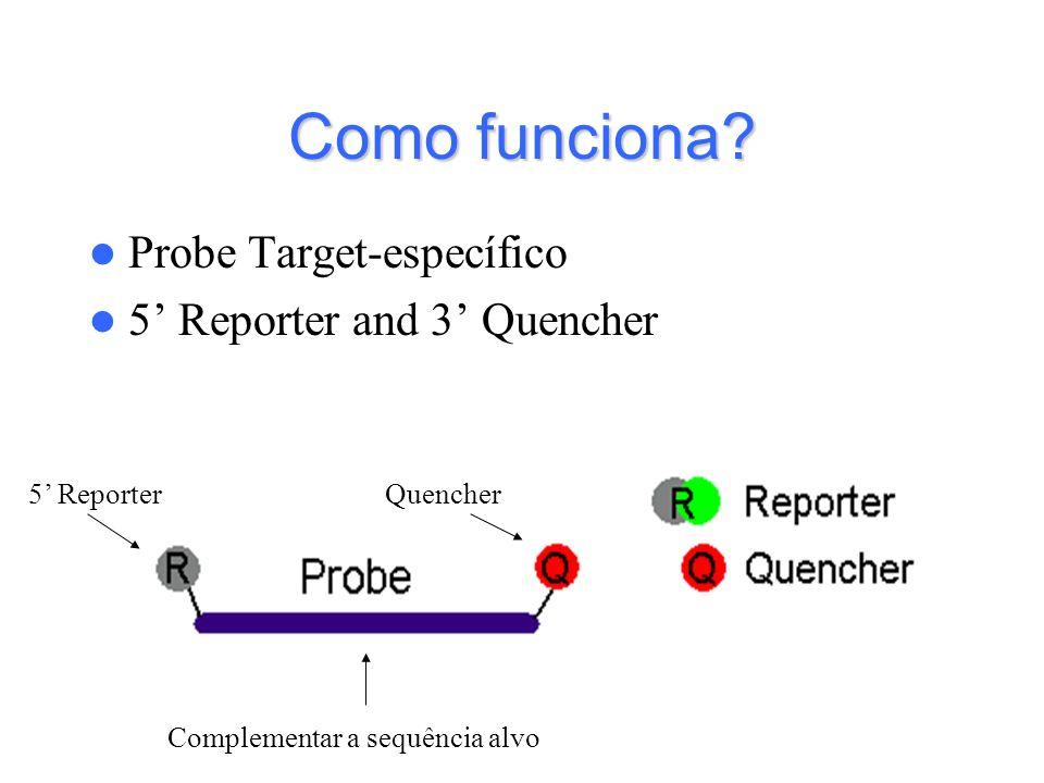 Como funciona Probe Target-específico 5' Reporter and 3' Quencher