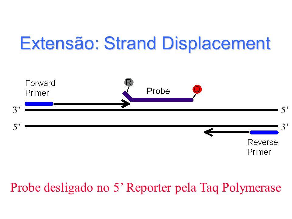 Extensão: Strand Displacement