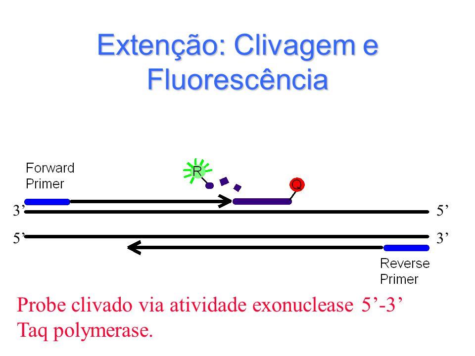 Extenção: Clivagem e Fluorescência