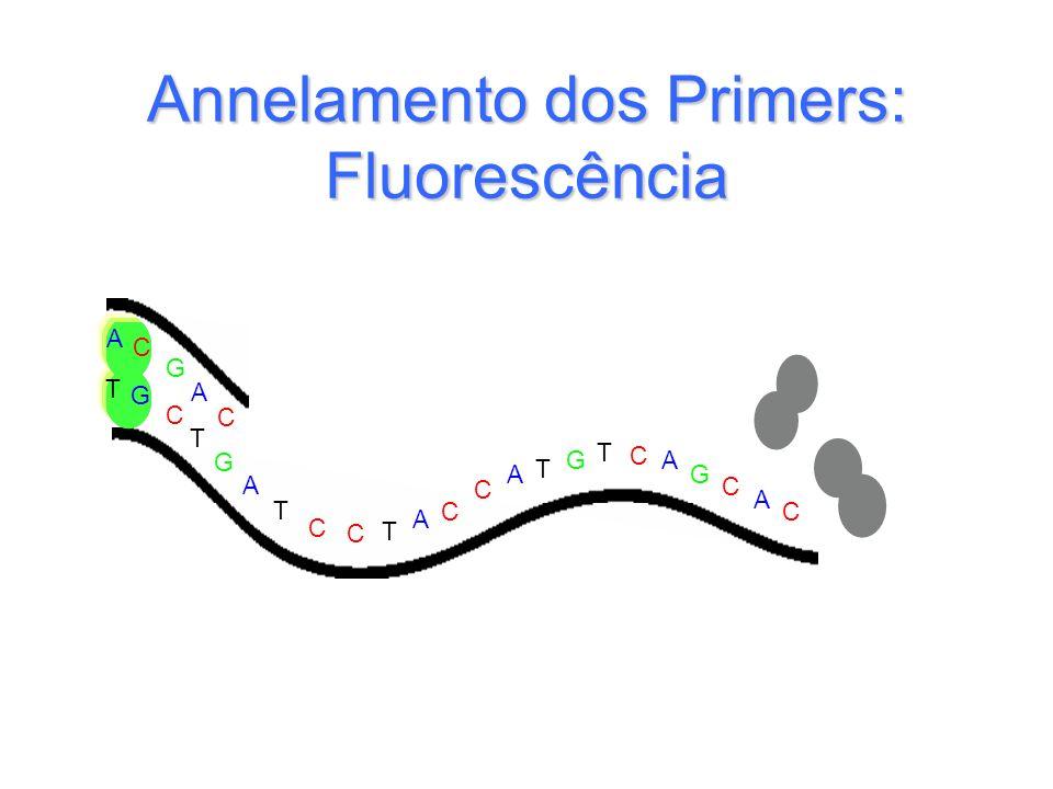 Annelamento dos Primers: Fluorescência