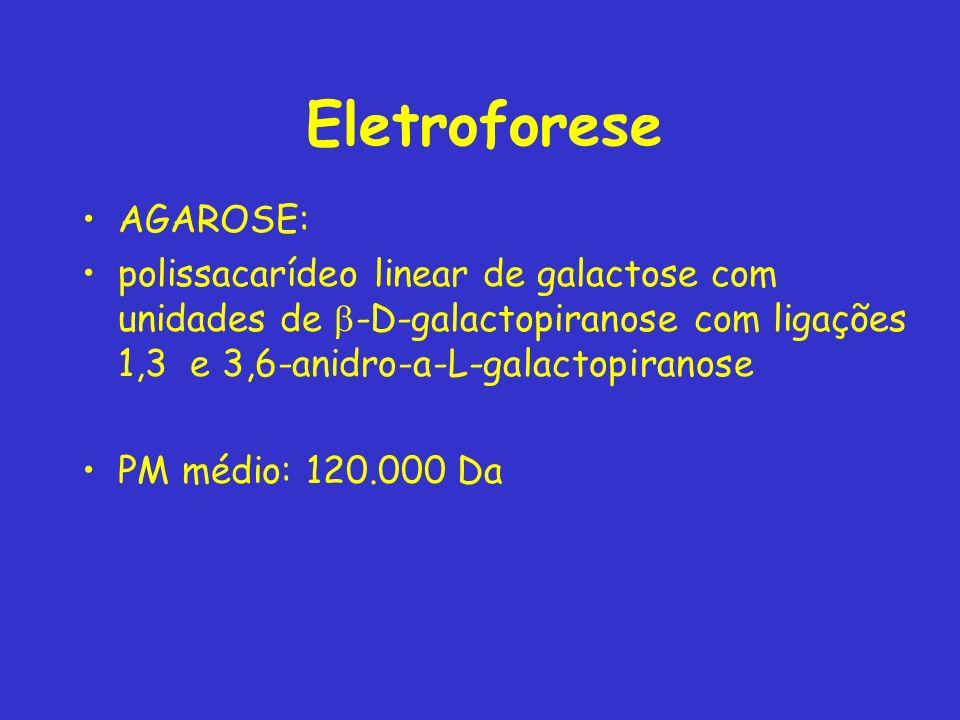 Eletroforese AGAROSE: