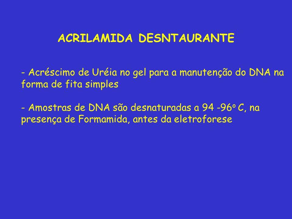 ACRILAMIDA DESNTAURANTE