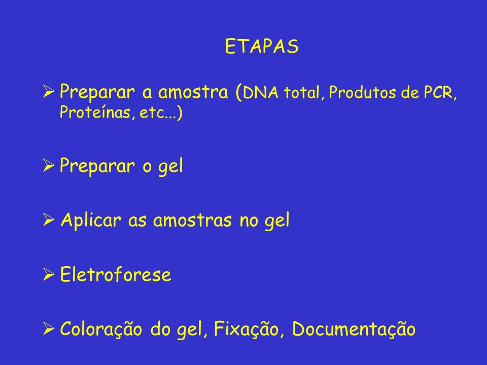 ETAPAS Preparar a amostra (DNA total, Produtos de PCR, Proteínas, etc...) Preparar o gel. Aplicar as amostras no gel.