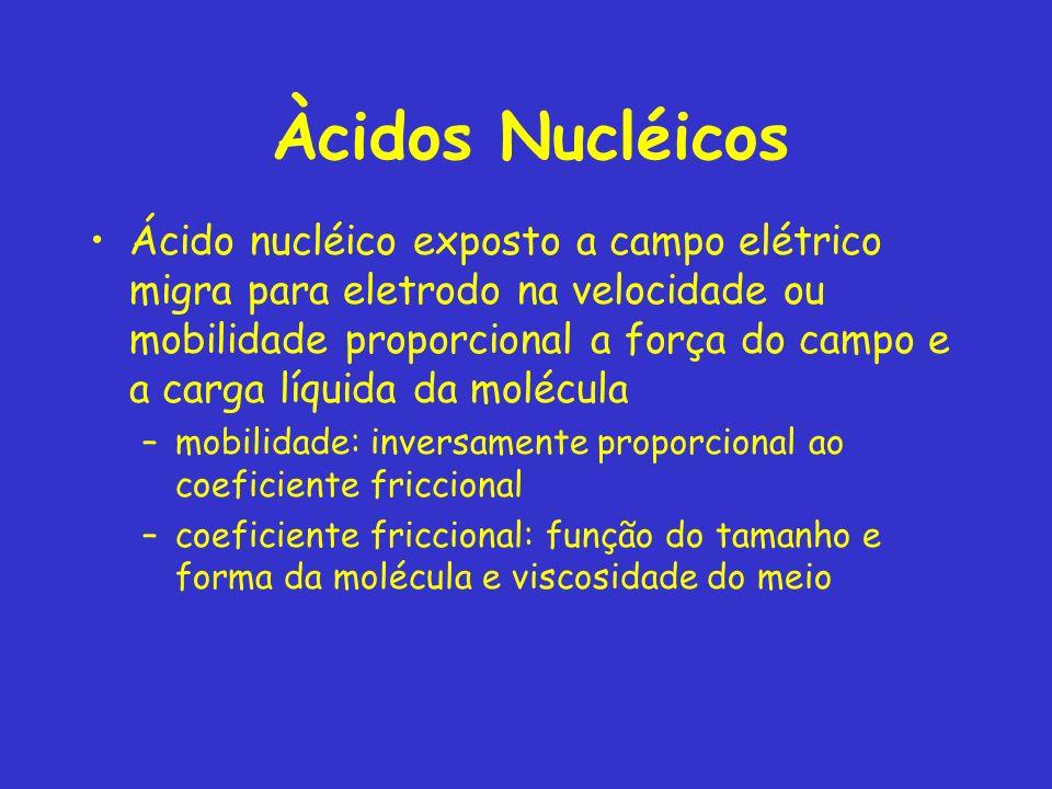 Àcidos Nucléicos