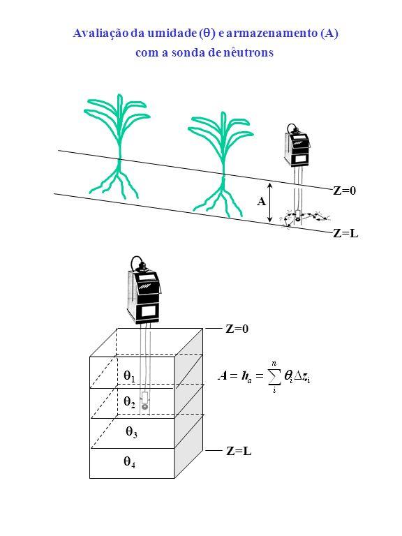 Avaliação da umidade (q) e armazenamento (A)