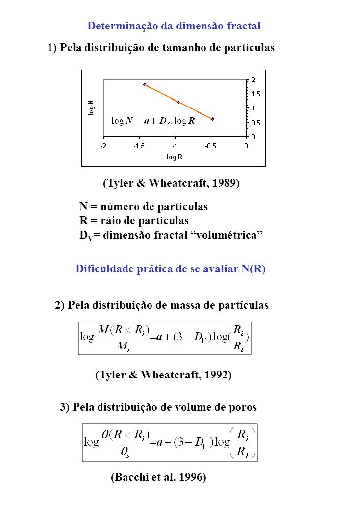 Determinação da dimensão fractal