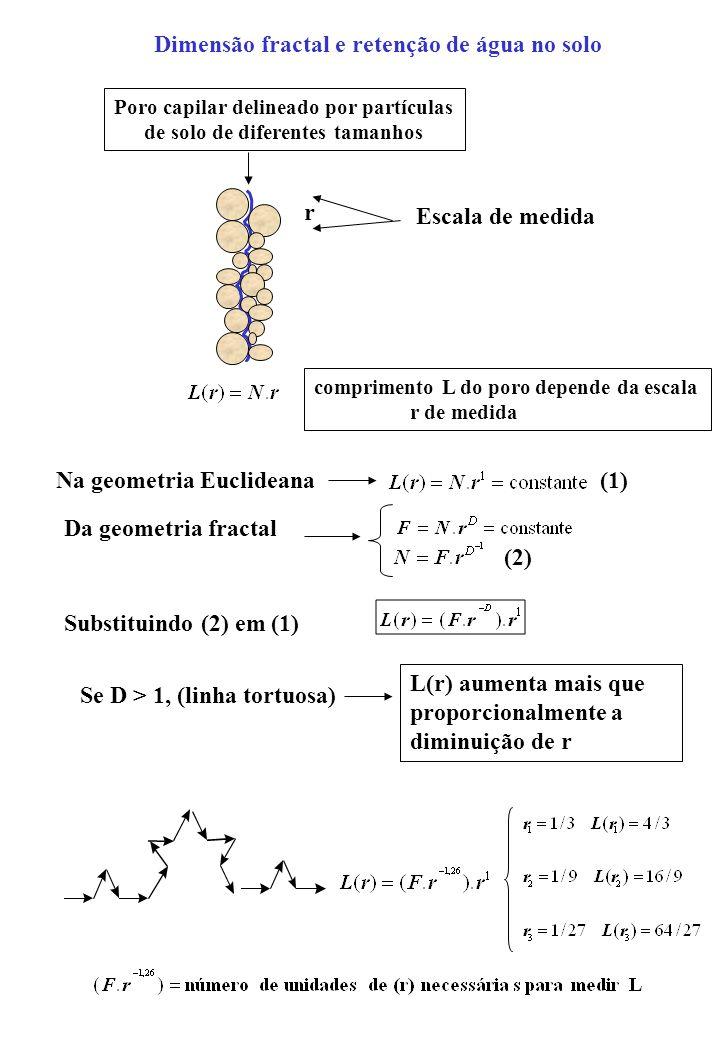 Poro capilar delineado por partículas de solo de diferentes tamanhos