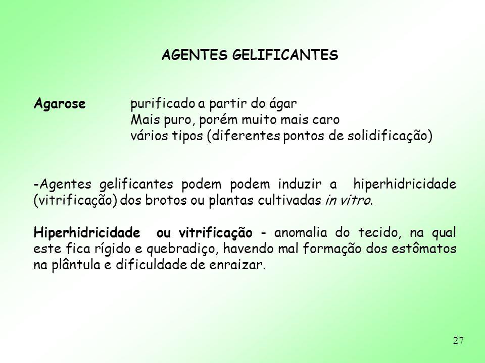 AGENTES GELIFICANTES Agarose purificado a partir do ágar. Mais puro, porém muito mais caro. vários tipos (diferentes pontos de solidificação)