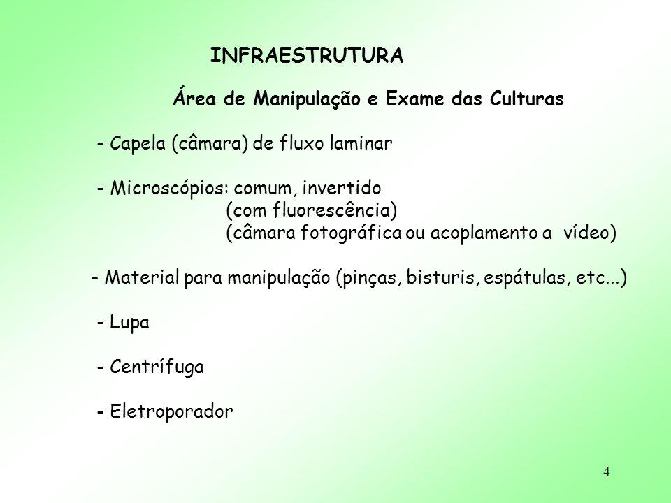 Área de Manipulação e Exame das Culturas