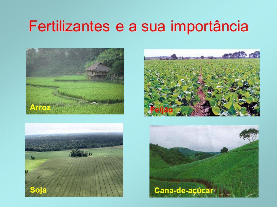 Fertilizantes e a sua importância