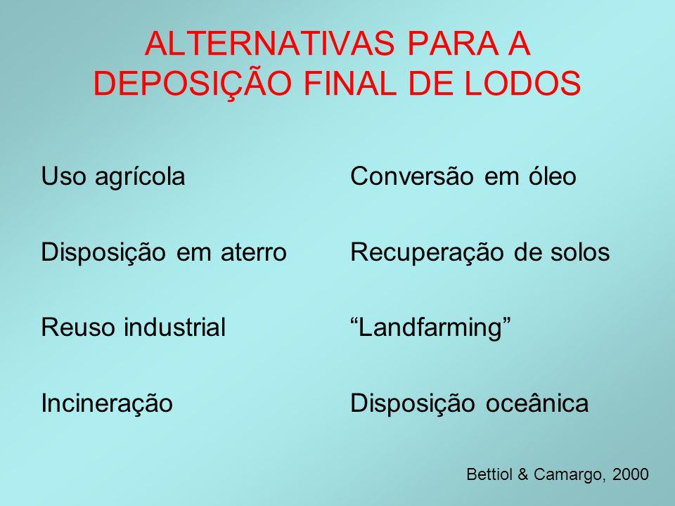 ALTERNATIVAS PARA A DEPOSIÇÃO FINAL DE LODOS