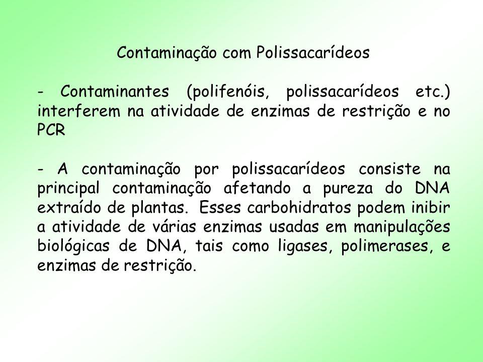 Contaminação com Polissacarídeos