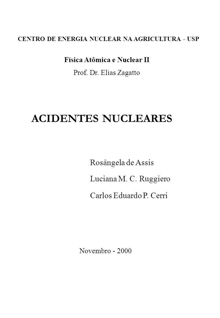 ACIDENTES NUCLEARES Rosângela de Assis Luciana M. C. Ruggiero