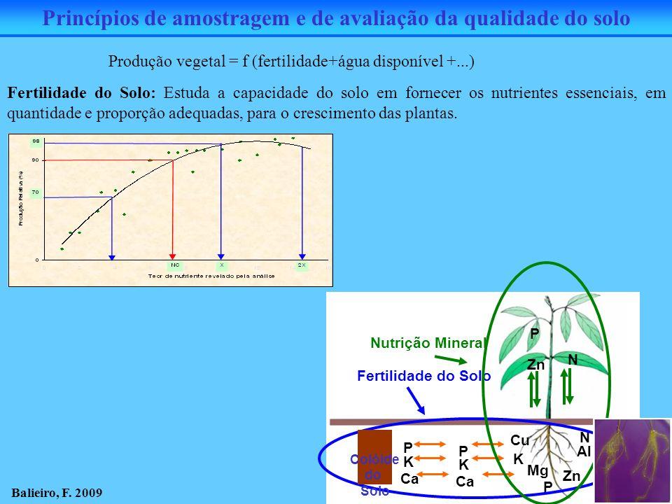 Princípios de amostragem e de avaliação da qualidade do solo