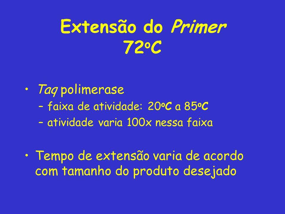 Extensão do Primer 72oC Taq polimerase