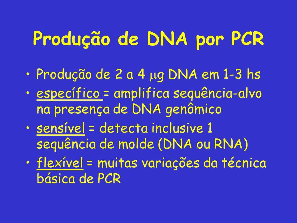 Produção de DNA por PCR Produção de 2 a 4 mg DNA em 1-3 hs