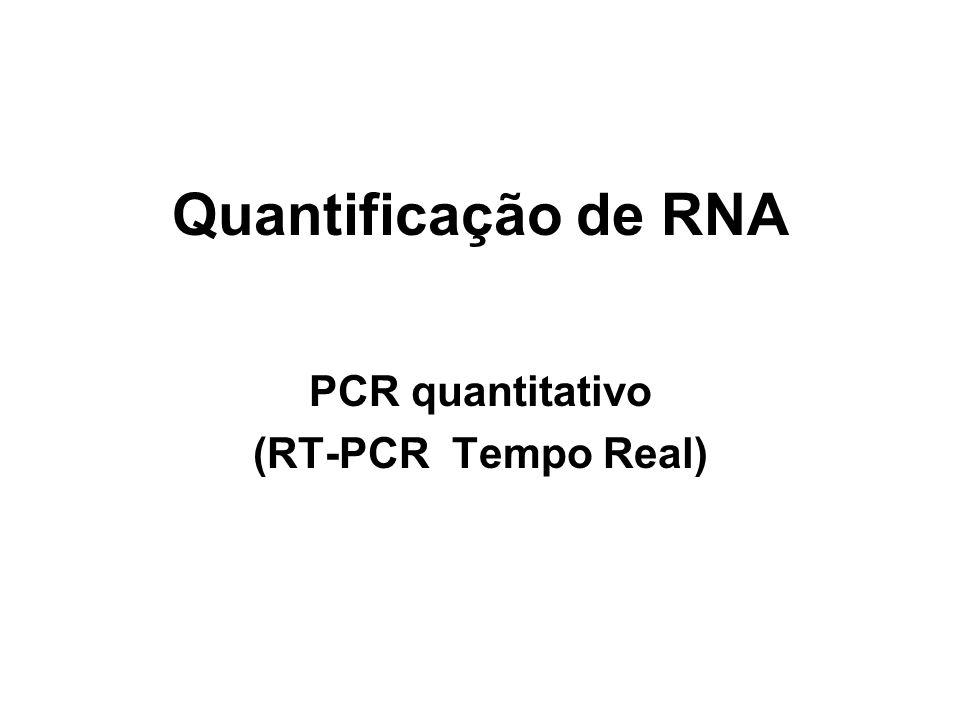 PCR quantitativo (RT-PCR Tempo Real)