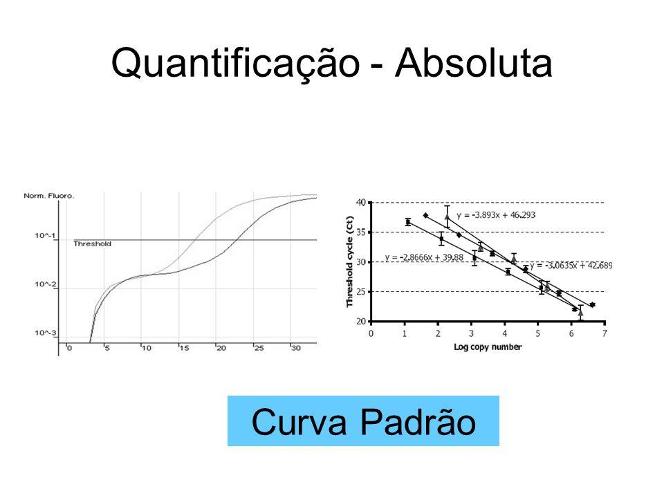 Quantificação - Absoluta