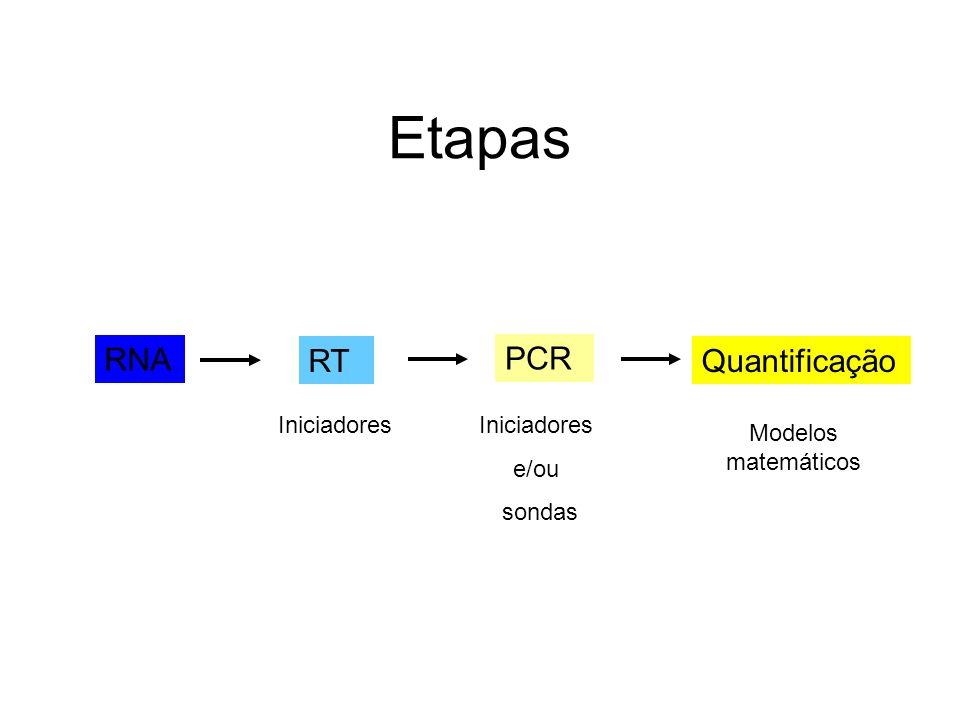 Etapas RNA RT PCR Quantificação Iniciadores Iniciadores e/ou sondas