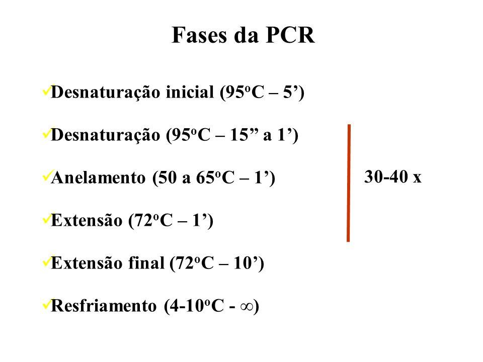 Fases da PCR Desnaturação inicial (95oC – 5')