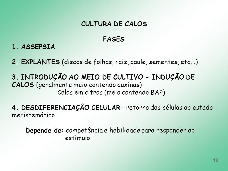 CULTURA DE CALOSFASES. 1. ASSEPSIA. 2. EXPLANTES (discos de folhas, raiz, caule, sementes, etc...)