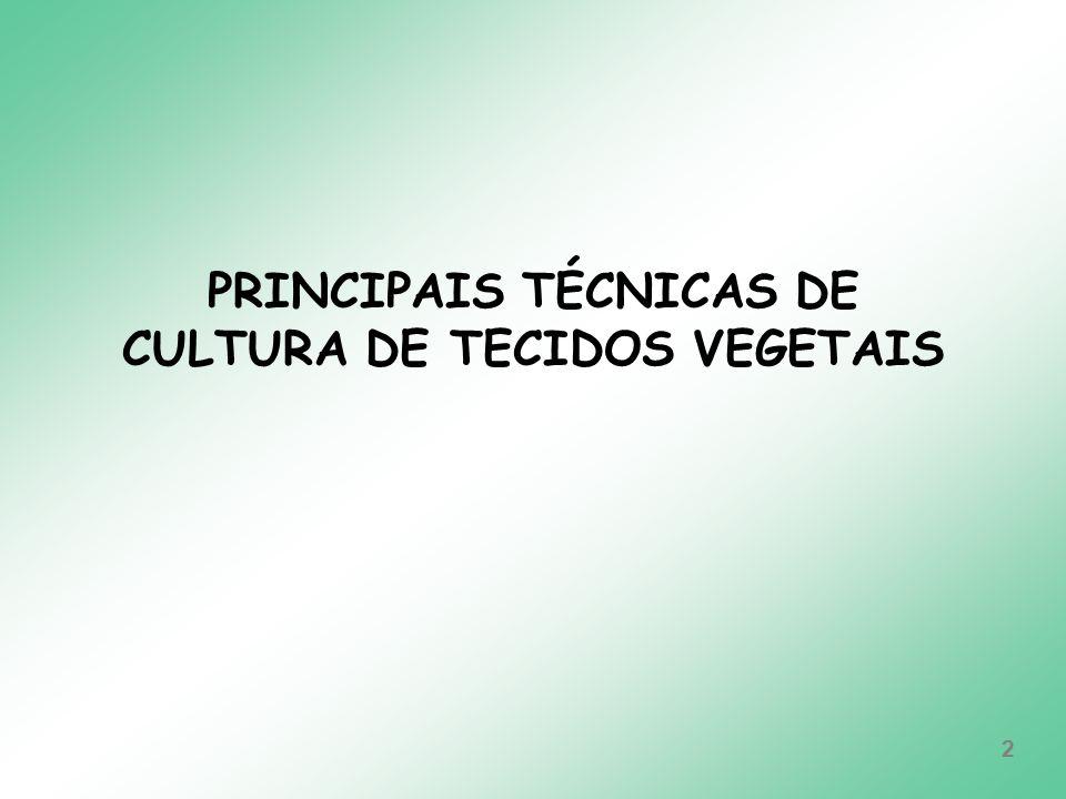 PRINCIPAIS TÉCNICAS DE CULTURA DE TECIDOS VEGETAIS