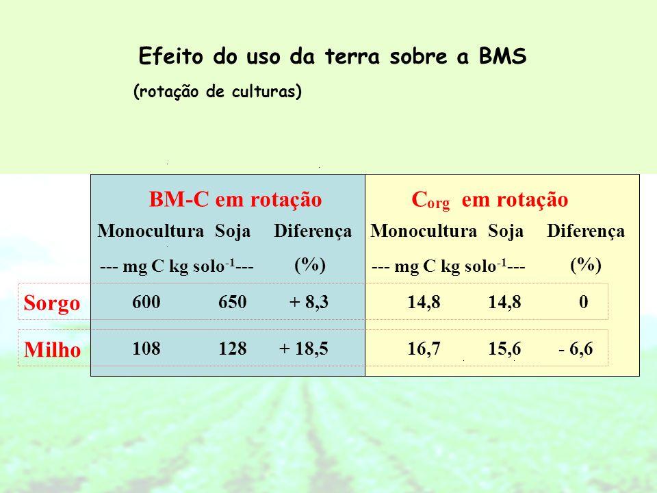 BM-C em rotação C em rotação Sorgo Milho