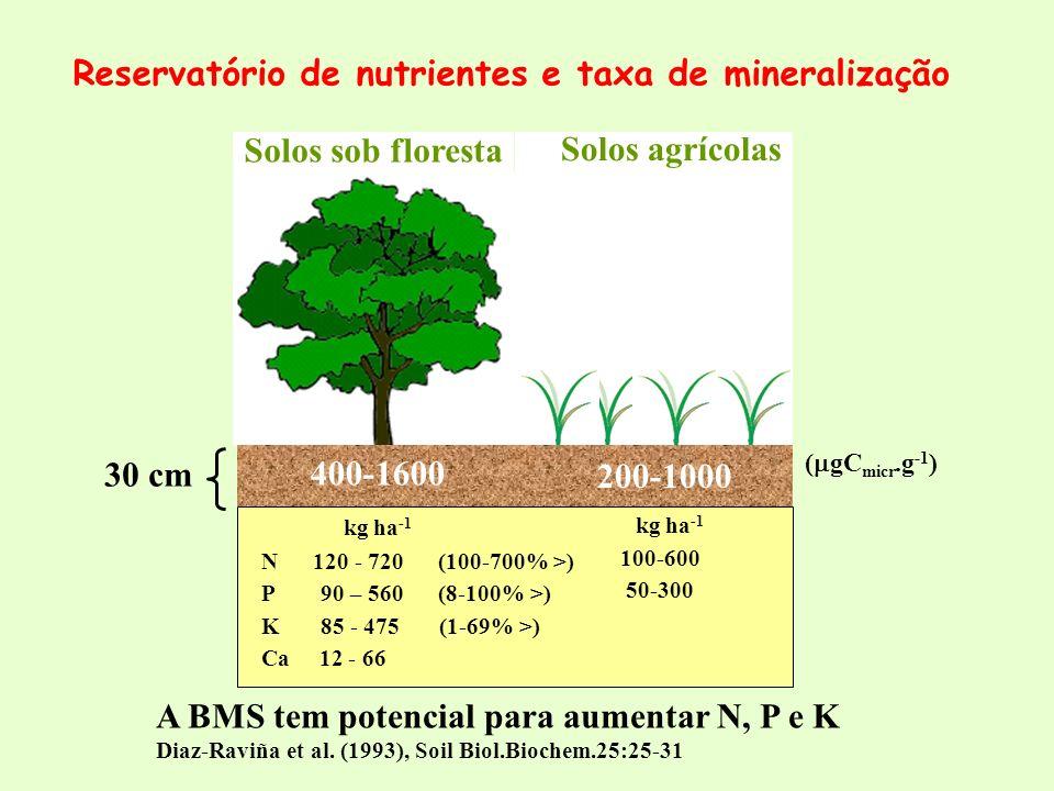 Solos sob floresta Solos agrícolas 30 cm 400-1600 200-1000