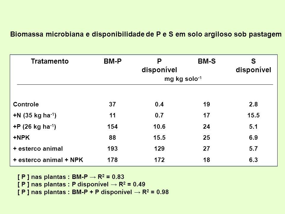 Tratamento BM-P P disponível BM-S S disponível