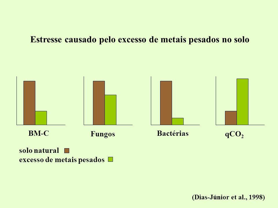 Estresse causado pelo excesso de metais pesados no solo