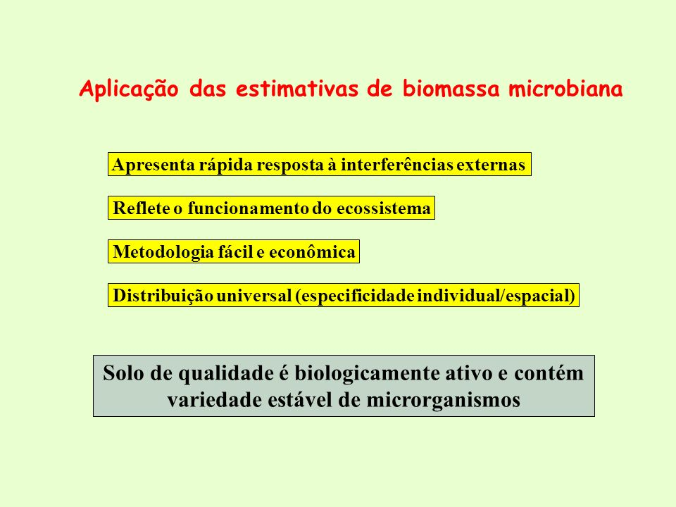 Aplicação das estimativas de biomassa microbiana