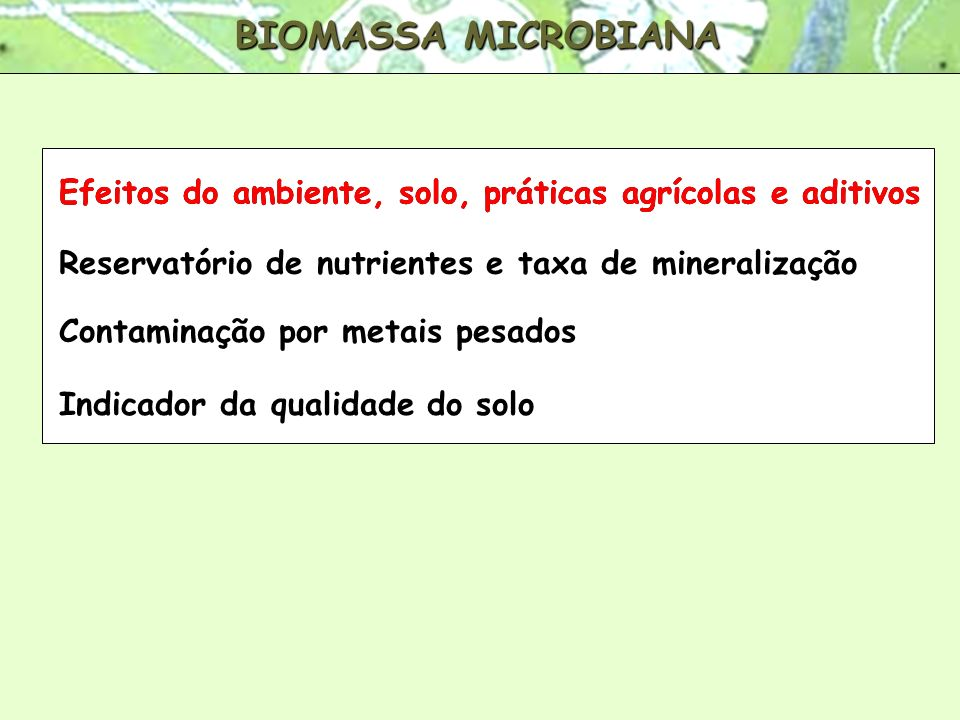 BIOMASSA MICROBIANA Efeitos do ambiente, solo, práticas agrícolas e aditivos. Efeitos do ambiente, solo, práticas agrícolas e aditivos.