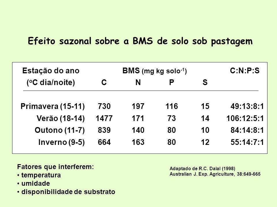 Efeito sazonal sobre a BMS de solo sob pastagem