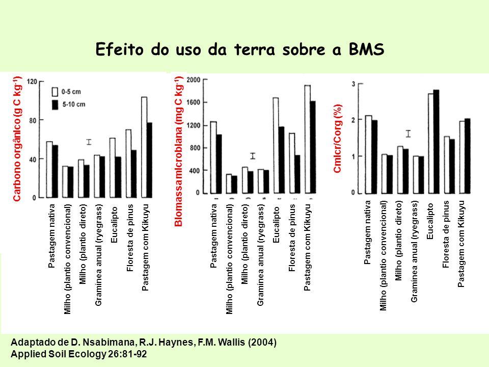 Efeito do uso da terra sobre a BMS