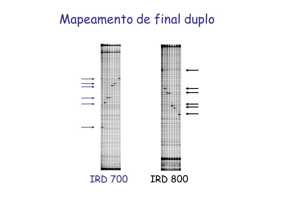 Mapeamento de final duplo