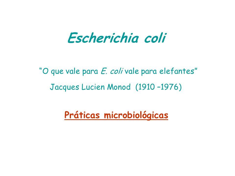 Práticas microbiológicas