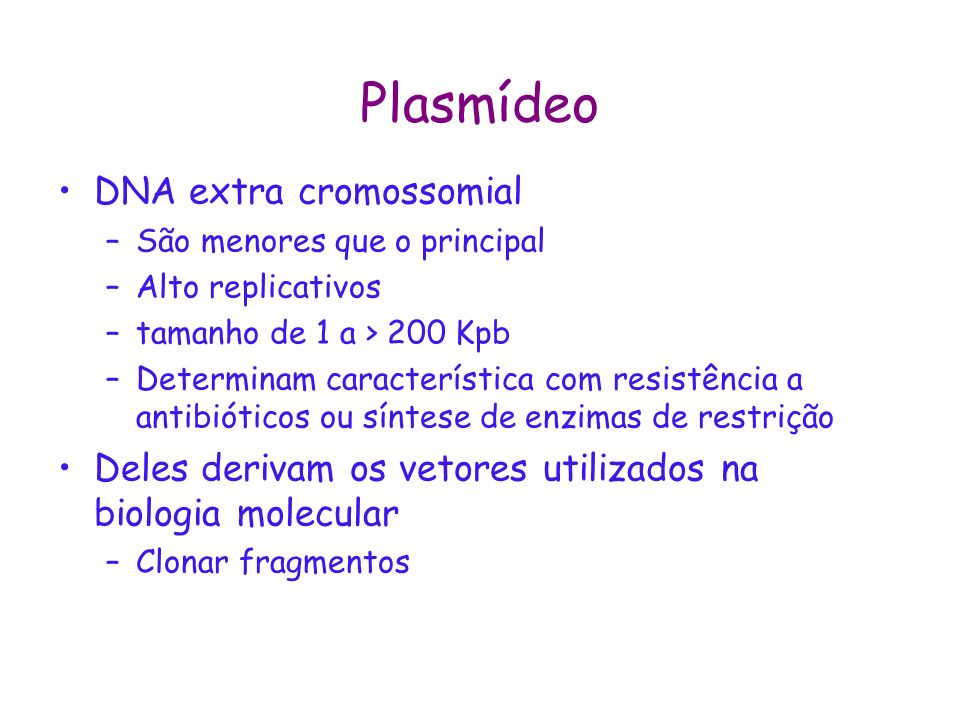 Plasmídeo DNA extra cromossomial
