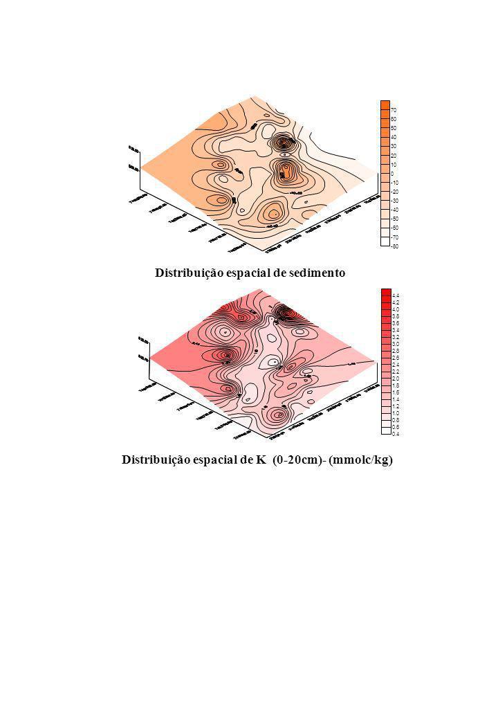 Distribuição espacial de sedimento