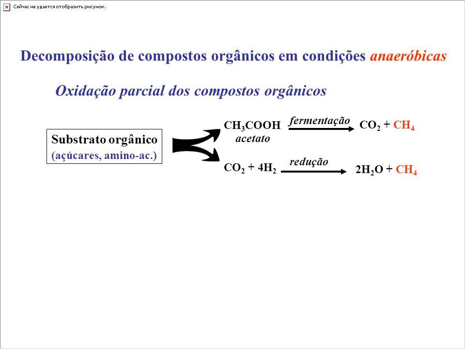 Decomposição de compostos orgânicos em condições anaeróbicas