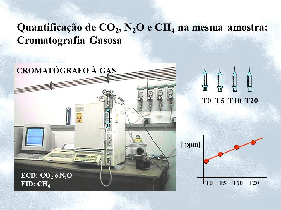 Quantificação de CO2, N2O e CH4 na mesma amostra: Cromatografia Gasosa