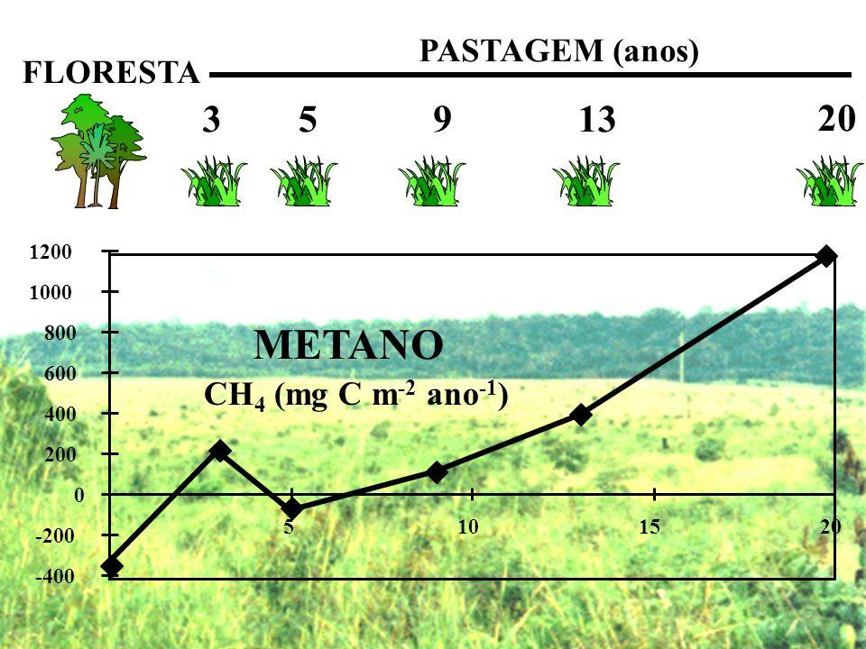 METANO 3 5 9 13 20 PASTAGEM (anos) FLORESTA CH4 (mg C m-2 ano-1) 1200