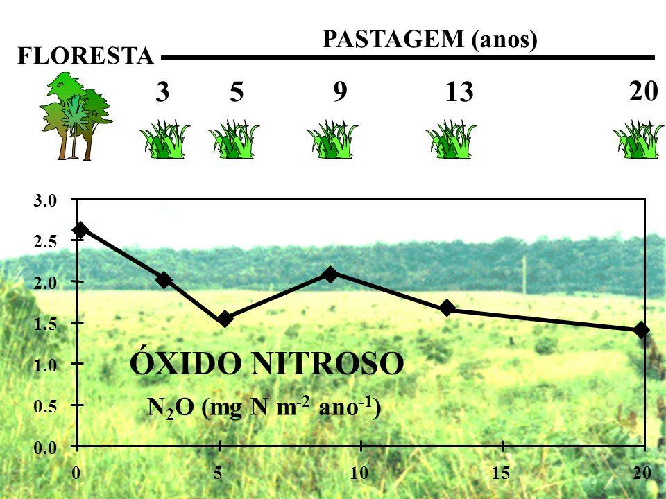 ÓXIDO NITROSO 3 5 9 13 20 PASTAGEM (anos) FLORESTA