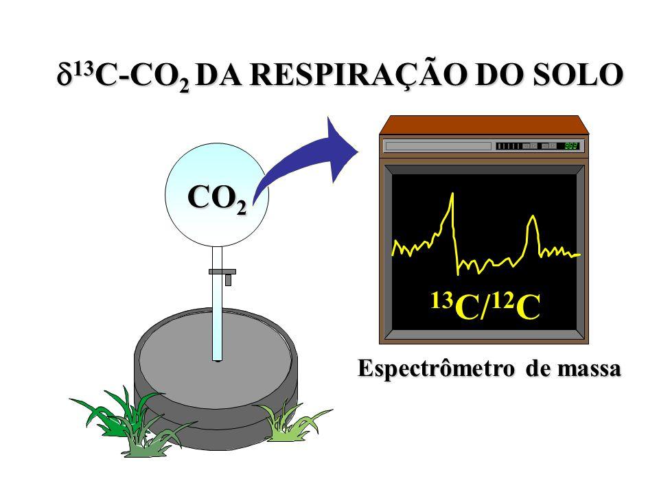13C-CO2 DA RESPIRAÇÃO DO SOLO