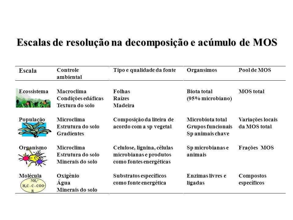 Escalas de resolução na decomposição e acúmulo de MOS